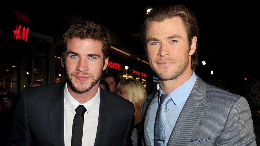 Liam und Chris Hemsworth, Schauspieler