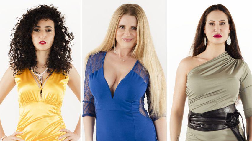 """Neuer """"M.O.M""""-Cast: Das sind die älteren Kandidatinnen"""
