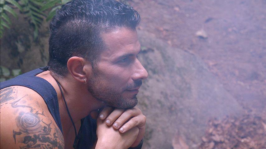 Einsicht im Dschungel: Marc Terenzi legt Dating-Pause ein!