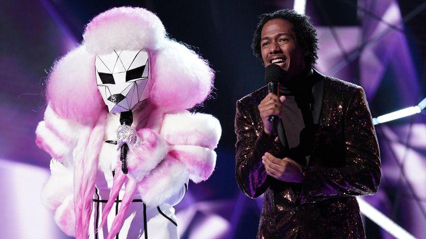 """Bei uns auch? So crazy waren die US-""""Masked Singer""""-Kostüme!"""
