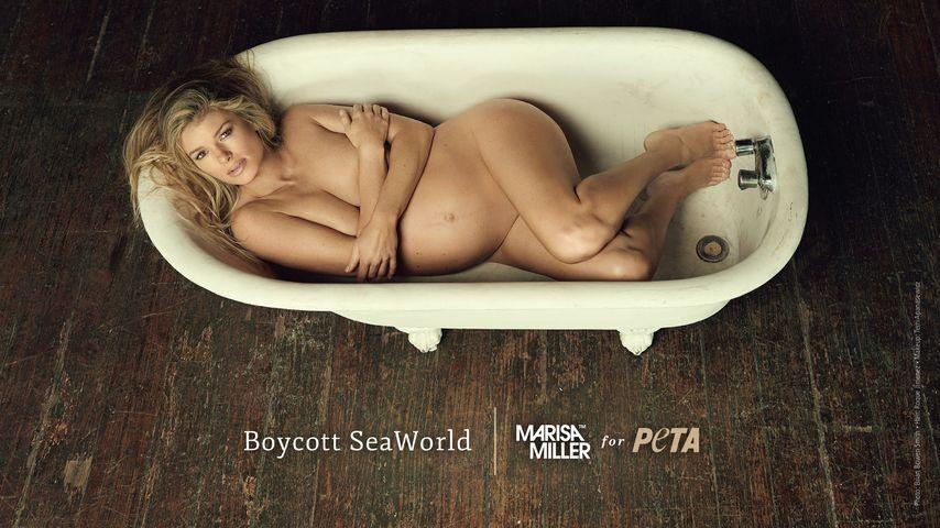 Für PETA: Nackte Marisa Miller zeigt Babybauch!