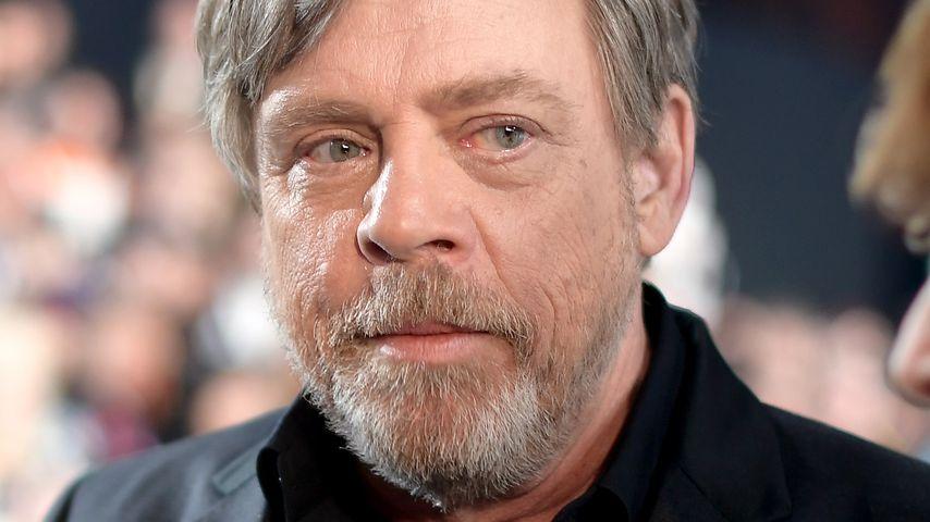 """Mark Hamill auf der """"Star Wars: The Last Jedi""""-Premiere in L.A."""