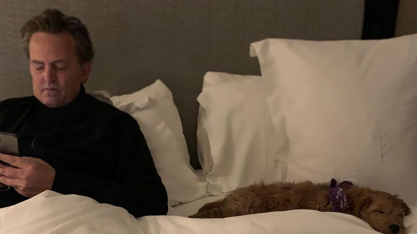 Matthew Perry und sein Hund Alfred