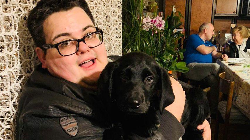 Dank Hund Amigo: Pizzaboy Max will 2020 Gewicht verlieren!