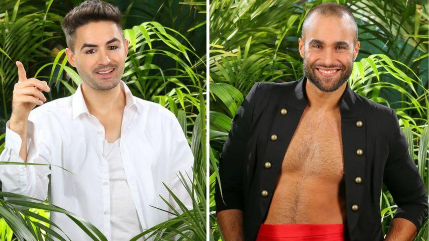 Menderes oder David: Welcher Dschungel-Star ist männlicher?