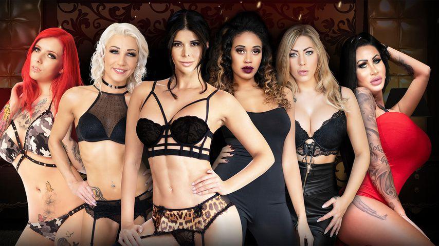Micaela Schäfer bekommt jetzt eigene Erotik-Casting-Show!