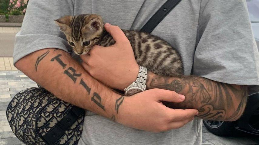 Mike Singer mit seiner Katze