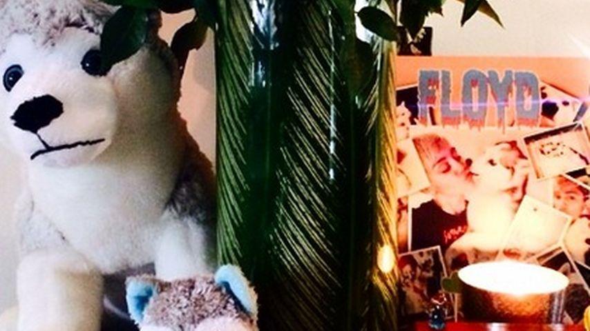 Zu krass? Miley Cyrus widmet totem Hund Schrein