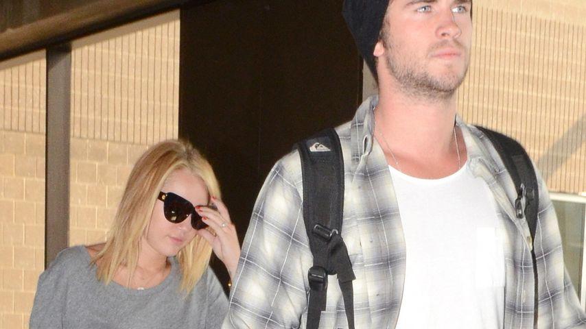 Miley Cyrus & Liam: Mit Hund Ziggy auf Reisen