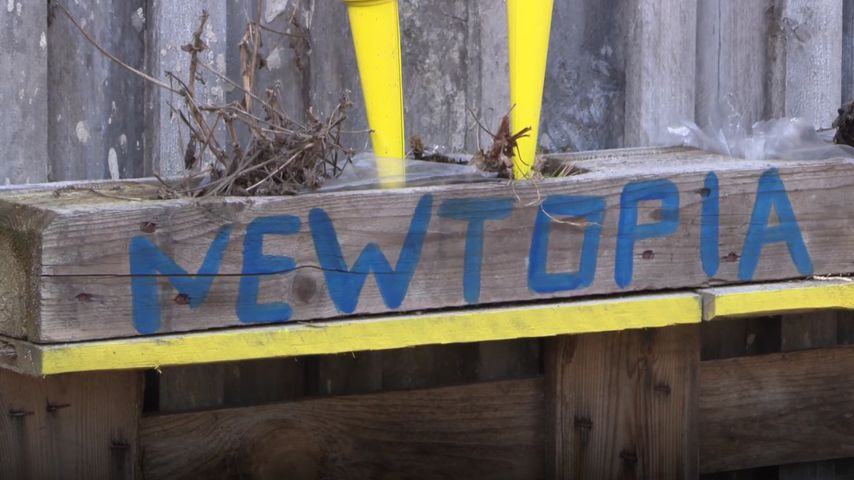 Newtopia kurz vor dem Aus: Jetzt rollen Pionier-Köpfe