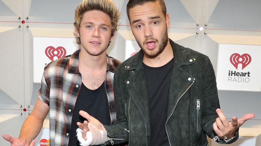 Niall Horan und Liam Payne