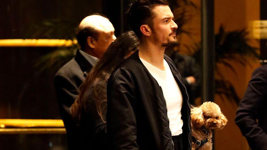 Orlando Bloom mit seinem Hund in Mailand
