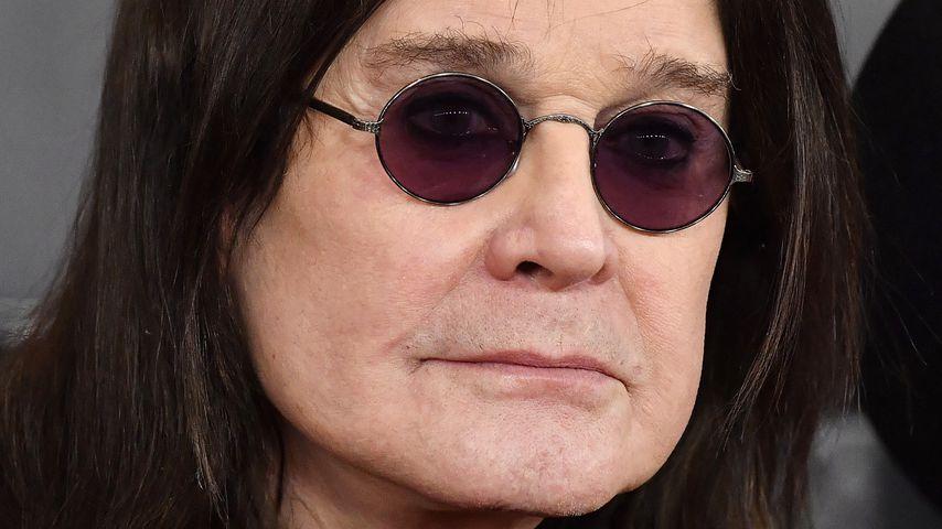 Ozzy Osbourne gesteht: Er tötet Katzen und Vögel im Garten