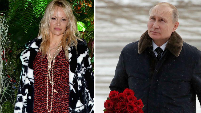 Irres Liebes-Gerücht: Datet Pamela Anderson Putin?