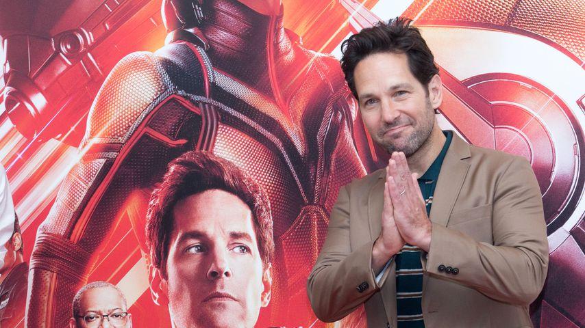 """Kommt noch ein """"Ant-Man""""-Teil nach """"Avengers: Endgame""""?"""