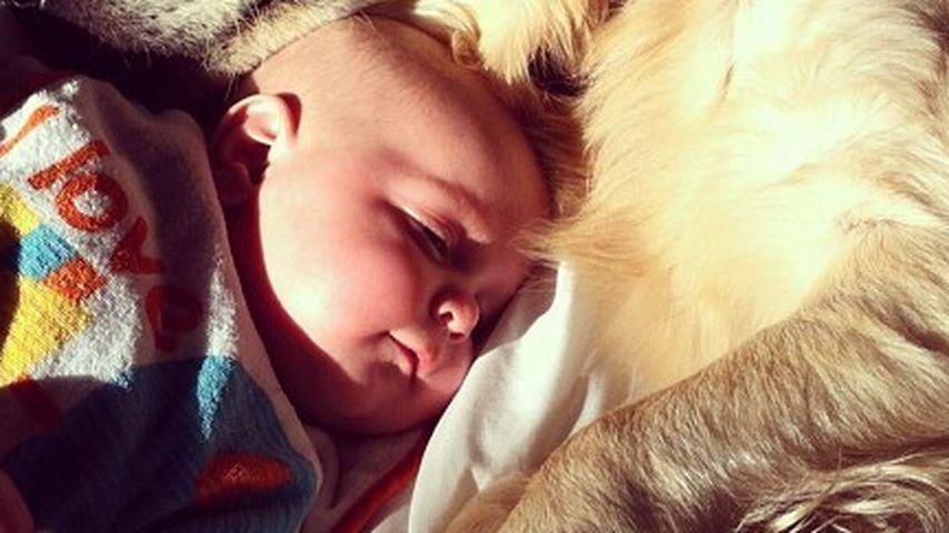 Peaches Geldof: Ihr Baby schmust mit Familien-Hund