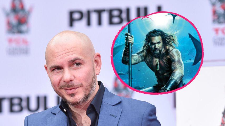"Fans entsetzt: Pitbull covert Totos ""Africa"" für ""Aquaman""!"