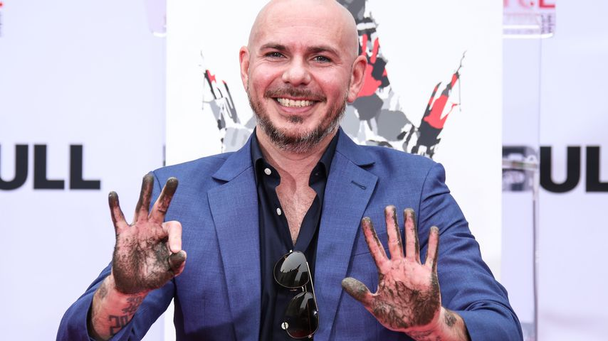 """Toto-Kulthit """"Africa"""": Sorgt Pitbull-Cover für Ohrenschmerz?"""