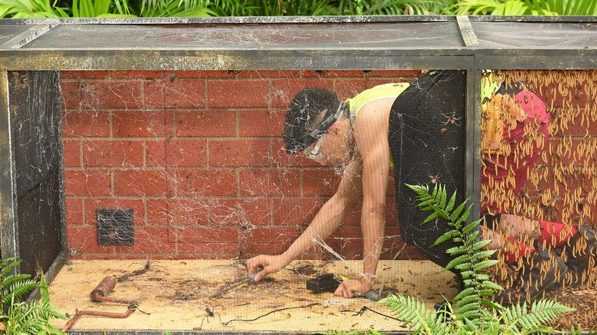 Prince Damien bei seiner Prüfung im Dschungelcamp