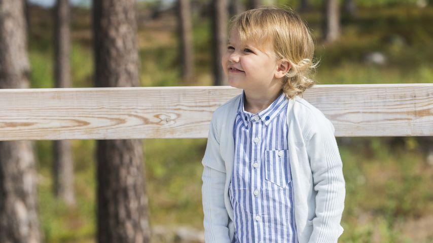 Prinz Alexander von Schweden beim Aussichtspunkt des Nynäs Naturreservats