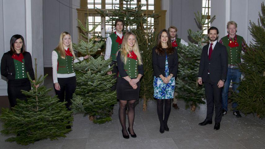 Es weihnachtet! Prinz Carl Philip & Sofia wählen Tanne aus