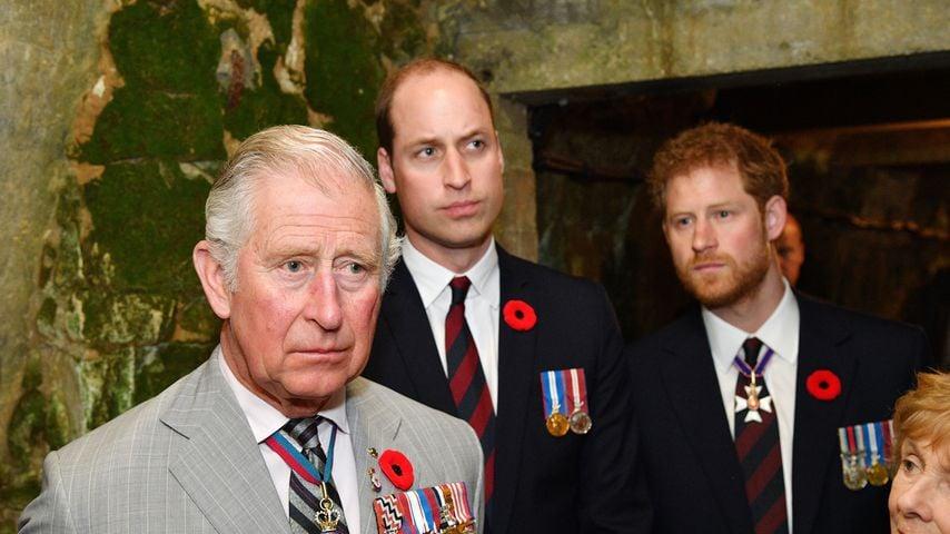 Treffen mit Harry: William und Charles trafen Vereinbarung