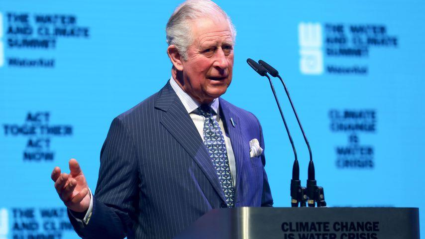 Prinz Charles beim Event in London im März 2020