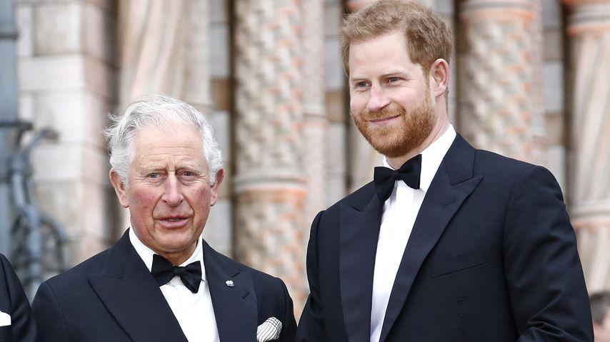 Prinz Charles und Prinz Harry im April 2019 in London