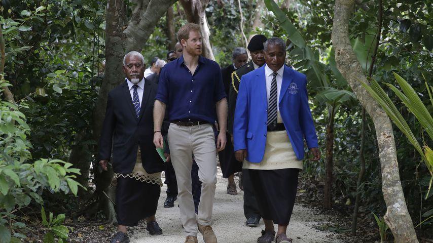 Prinz Harry auf Besichtigungstour durch den Regenwald auf Tongo