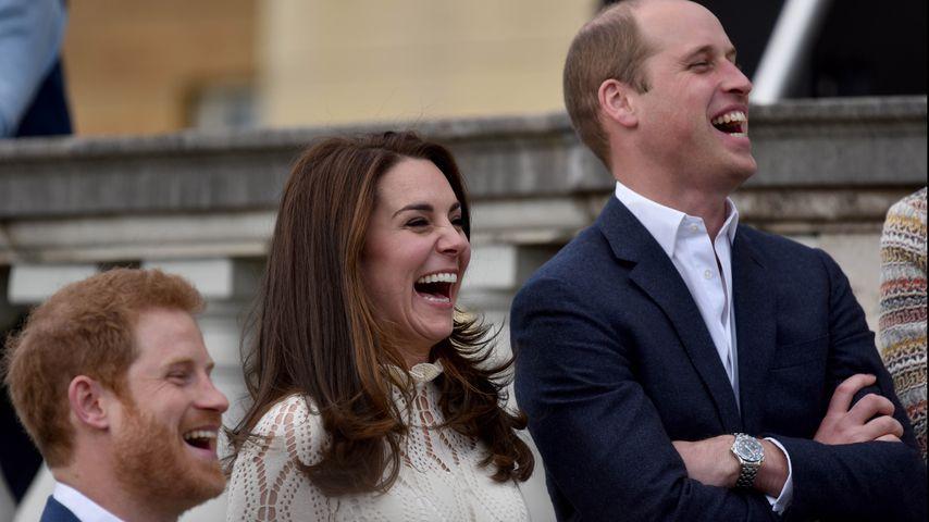 Prinz Harry, Herzogin Kate und Prinz William während einer Tea Party