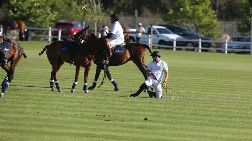 Peinliche Polo-Panne: Prinz Harry plumpst vom Pferd