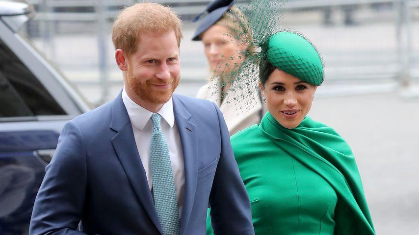 Prinz Harry und Herzogin Meghan, Herzogpaar von Sussex