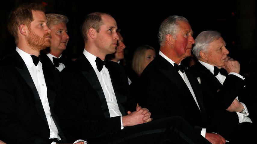 Prinz Harry, Prinz William und Prinz Charles im April 2019