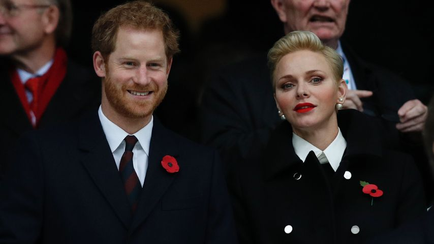 Royale Freunde: Prinz Harry & Charlène von Monaco beim Rugby