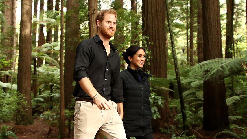 So teuer wird der Umzug von Prinz Harry & Herzogin Meghan!