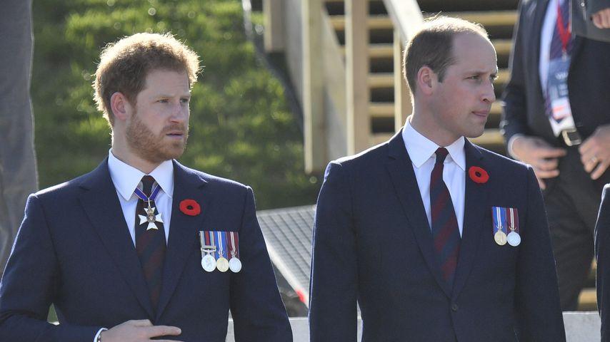 Harry gibt zu: Beziehung zu William ist nicht immer einfach!