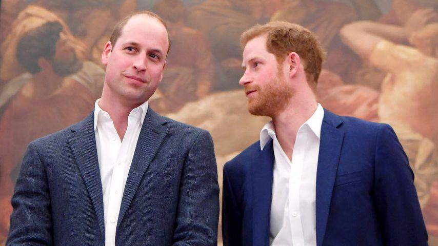 So sollten Prinz William und Bruder Harry eigentlich heißen!