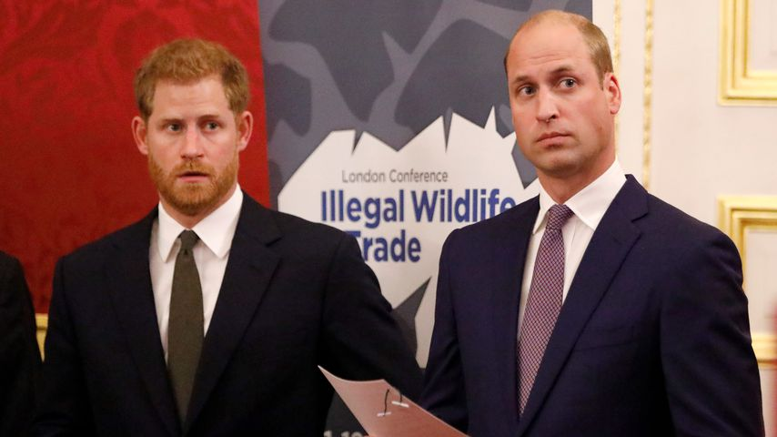 Prinz Harry und Prinz William bei einer Konferenz in London im Oktober 2018