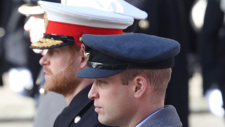 Prinz Harry und Prinz William im November 2018