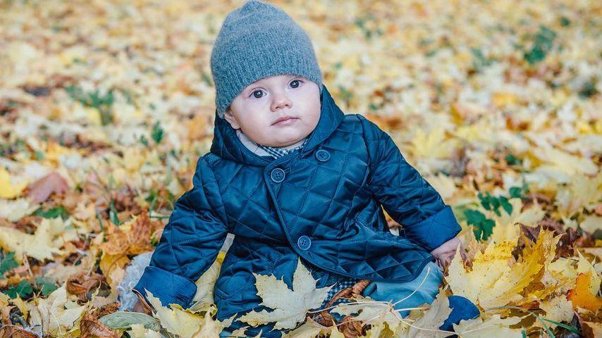 Süßer Schweden-Spross: Prinz Oscar chillt im Herbstlaub