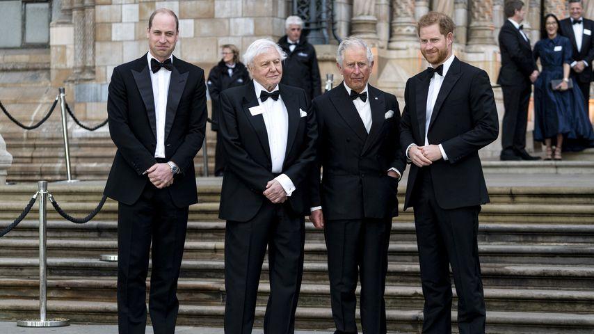 Prinz William, David Attenborough, Prinz Charles und Prinz Harry im April 2019