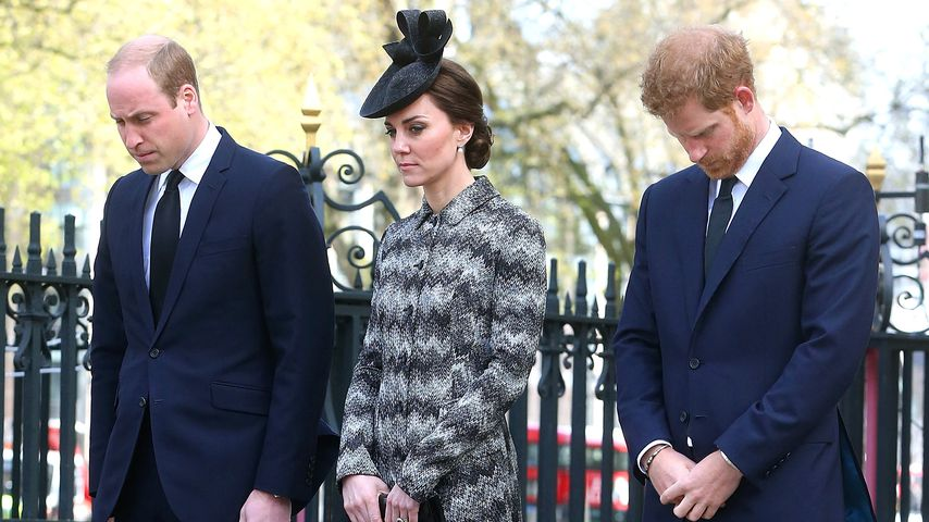 Kurz nach Pippas Hochzeit: Kate, William & Harry trauern!