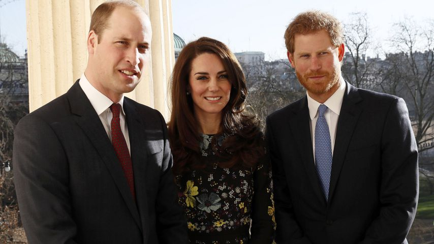 William, Kate & Harry: Nahbar wie nie in Gedenken an Diana