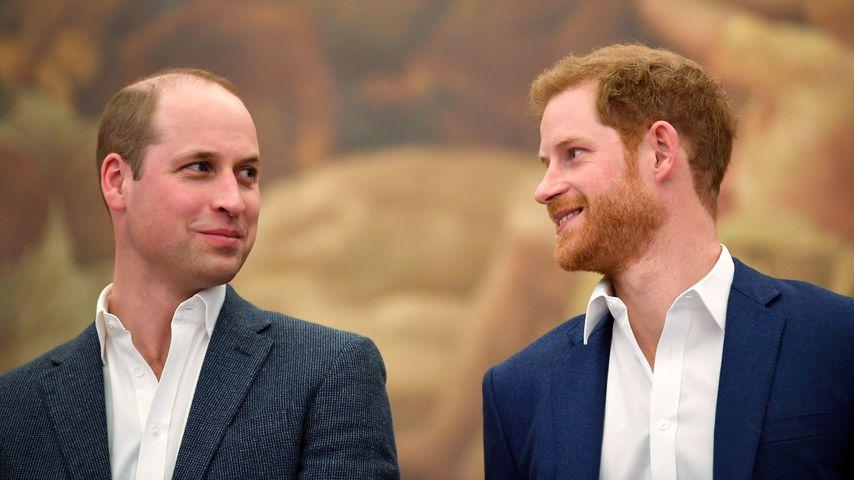 Harry und William würdigen Dianas Vermächtnis in einem Brief