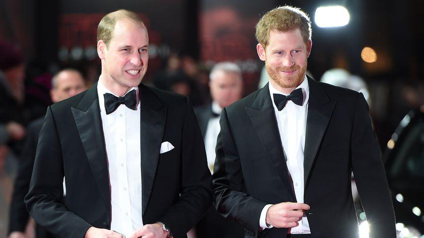 Prinz William & Harry teilen altes Baumhaus mit ihren Kids