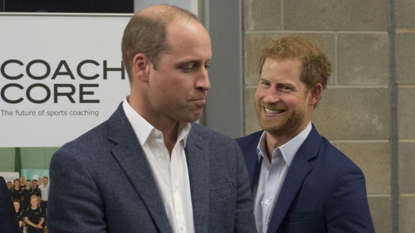 Prinz William und Prinz Harry in London, 2017