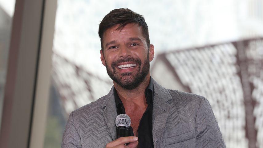 """Sänger Ricky Martin: """"Meine Kinder sind schlauer als ich!"""""""