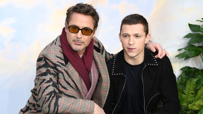 """Robert Downey Jr. und Tom Holland bei einer """"Dr. Dolittle""""-Vorführung in London im Januar 2020"""