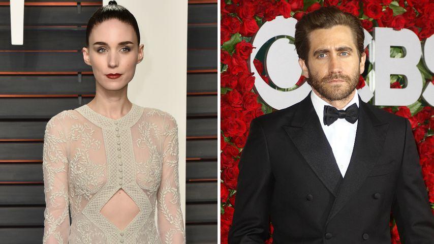 Geht da was? Jake Gyllenhaal & Rooney Mara daten sich