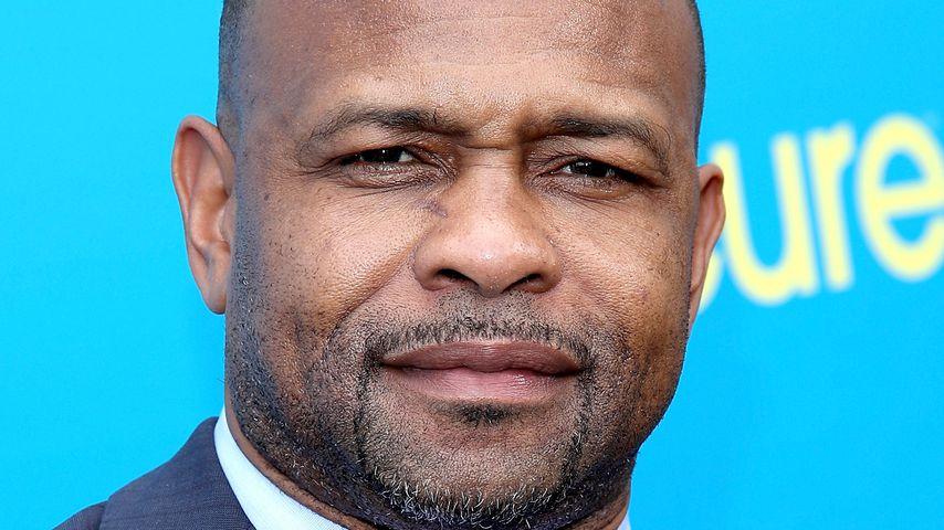 Roy Jones Jr., Boxer